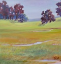 Grassy Slope  Oil on Canvas  24